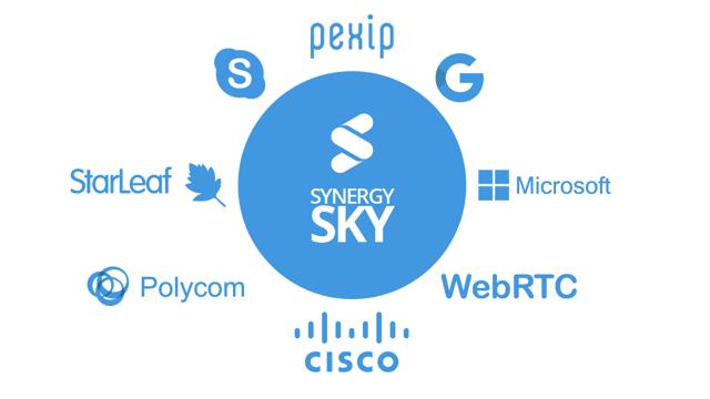 Synergy partner family.png